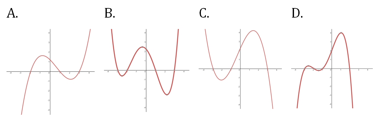 Characteristics of polynomial graphs