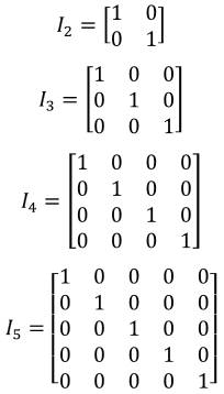 identity matrix of various n