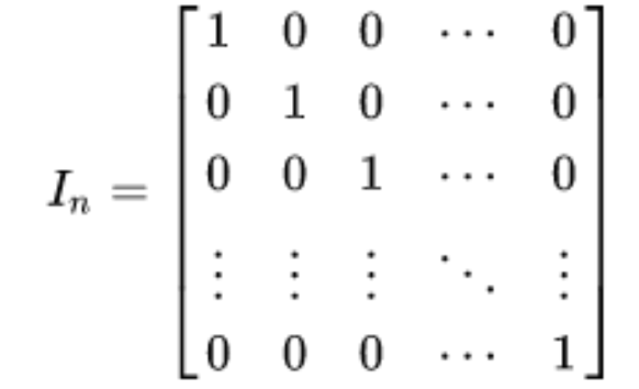 Equation 1: General expression of an identity matrix