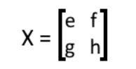 Equation 2: Matrix X