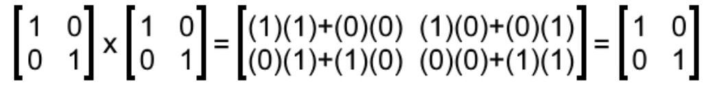 Equation 8: The identity matrix as inverse multiplicative of itself.