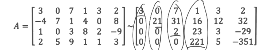Equation for example 3(a): Circling the pivots in the echelon form matrix