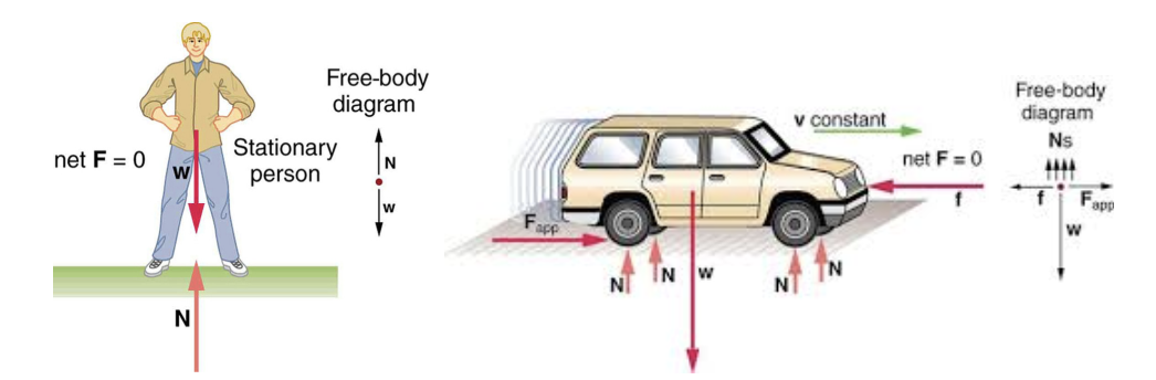 Figure 1: Free-body diagrams of a stationary person and a car in motion