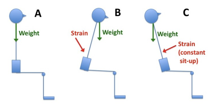 Figure 7: Force diagram on office ergonomics