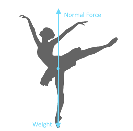 Figure 8: Free body diagram on a ballet dancer