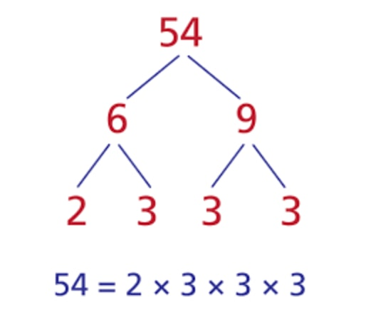 Use factor tree to factorize 54