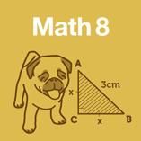 Course math8