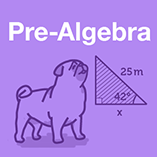 Course prealgebra